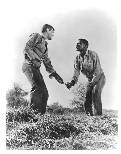 Tony Curtis, Sidney Poitier in THE DEFIANT ONES (1958)